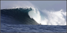 Description: http://graphics8.nytimes.com/images/2008/01/09/sports/09surf.1.600.jpg